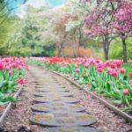 Piękny oraz uporządkowany ogród to zasługa wielu godzin spędzonych  w jego zaciszu w trakcie jego pielegnacji.